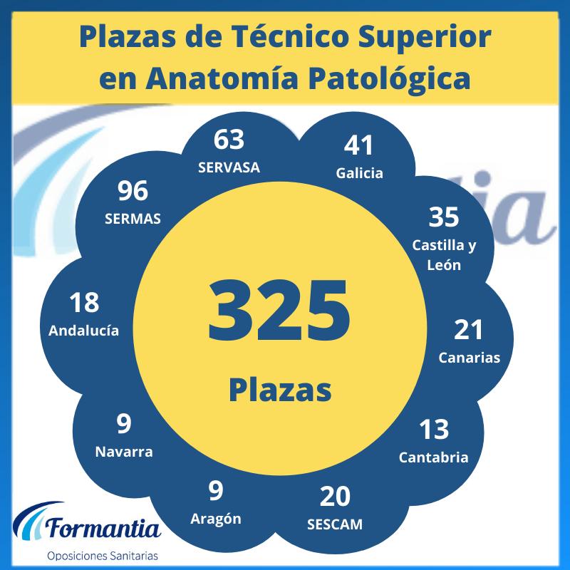 Hay más de 300 plazas de Técnico Superior en Anatomía Patológica