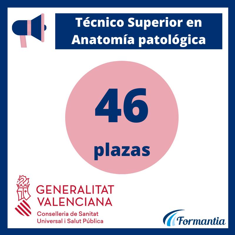 Convocatoria de Técnico Especialista en Anatomía Patológica para la Comunidad Valenciana